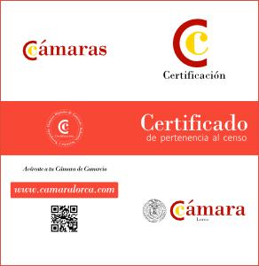 certificado-censo