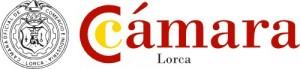 Presentación ayudas a I+D+i INFOinnova @ CECLOR | Lorca | Región de Murcia | España